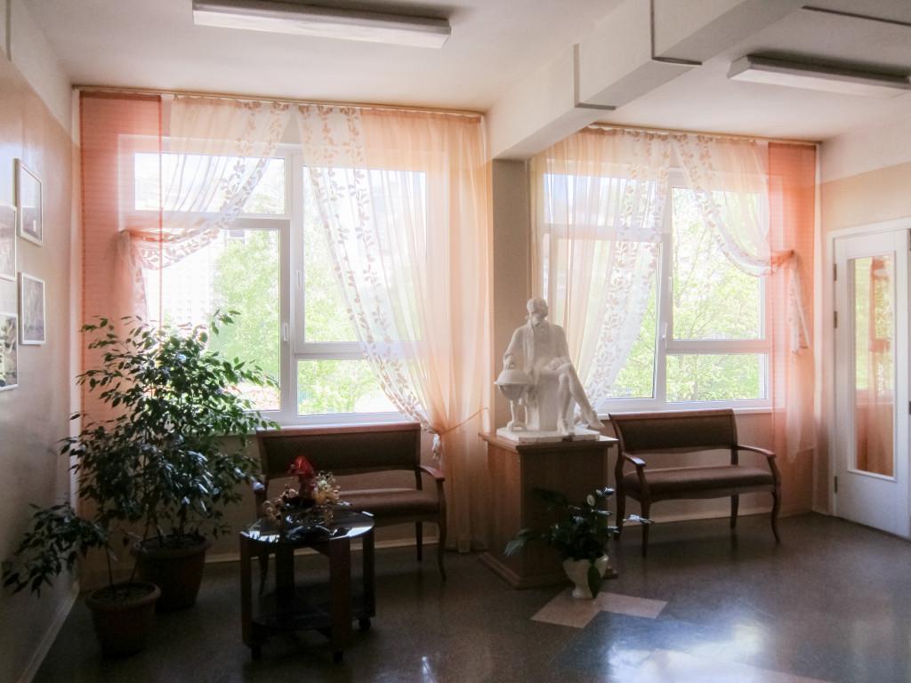 1.31 шторы в школьную рекреацию (3)
